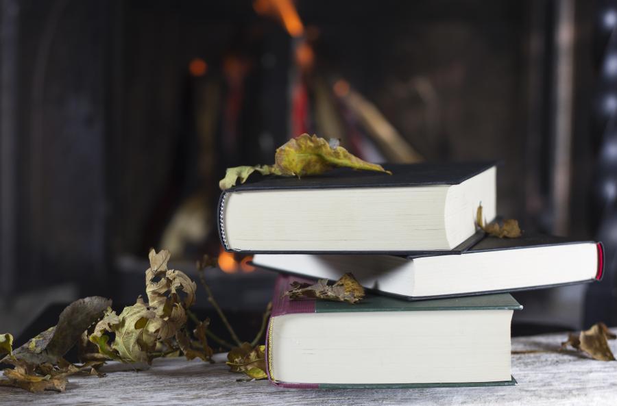 Populære bøger fra 2018