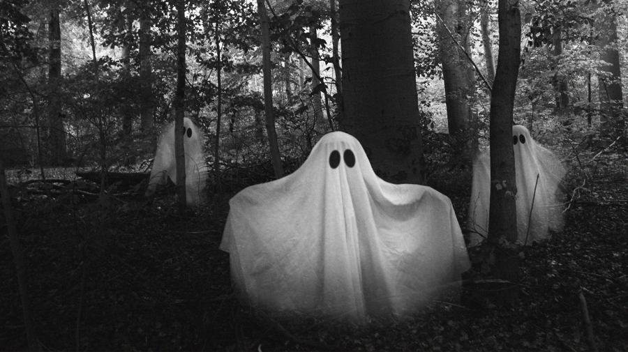 Foto: spøgelser i skov