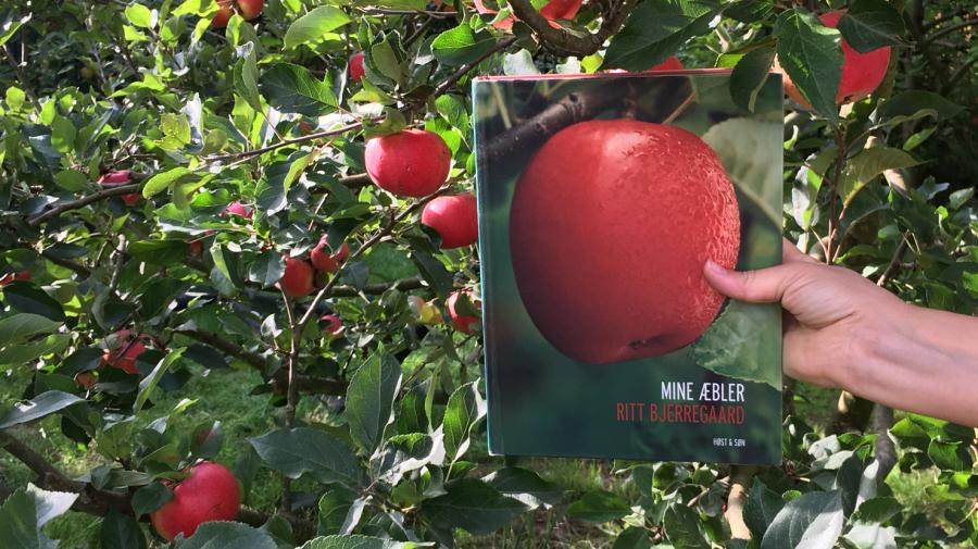 Foto: Bog om æbler