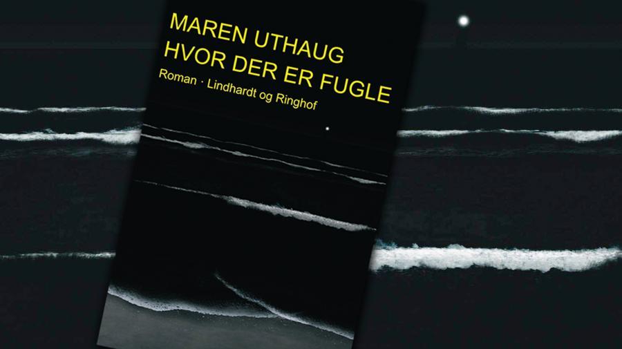 Forside: Maren Uthaug: Hvor der er fugle